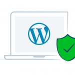 Plugin a rischio, sicurezza wordpress