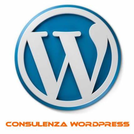 1 ora di consulenza wordpress